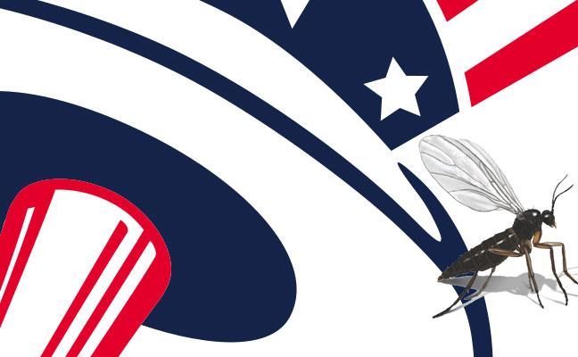 New York Yankees vs Washington Gnats